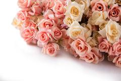A bunch of roses lays on the white floor Stock Photos