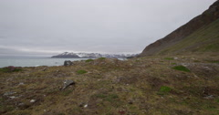 Dolly - Arctic Island Coast with Mountains Stock Footage