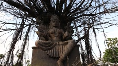 Durga Statue in exterior of Temple Stock Footage