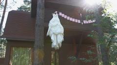 Wedding dress on a wooden house, flare sunbeam Stock Footage