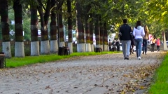 Young people walk in the park. Stock Footage