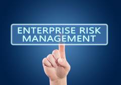 Enterprise Risk Management Stock Illustration