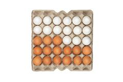 Twenty four of white and brown eggs in the box Stock Photos