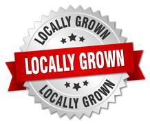 locally grown 3d silver badge with red ribbon - stock illustration