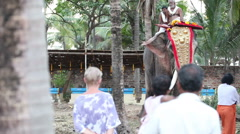Indian men decorate elephant for traditional temple holiday Stock Footage