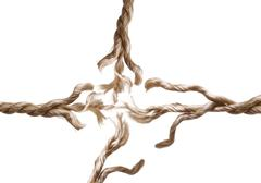 Frayed rope isolated - stock photo