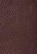 Natural qualitative brown leather texture Stock Photos