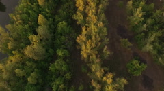 Aerial view of forest and river, Russia Stock Footage