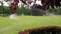 Sprinkler irrigation in public park - stock footage