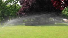 Sprinkler irrigation in public park Stock Footage