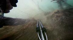 Freediver Spear Fishing and Going Through Hardcore Algae Stock Footage