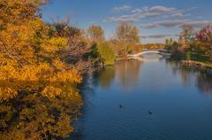 Fall Colors South Detroit River Kuvituskuvat