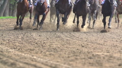 Many of racehorses epic galloping run a closeup of the horse's legs and hooves Stock Footage