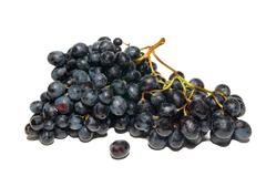 Black grapes isolated on white. - stock photo