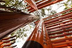 Torii gates - stock photo