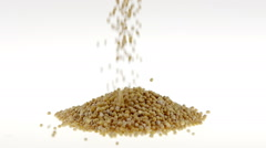 Slow Motion Mustard Seeds Falling on White Background Stock Footage