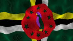 Waving Flag Dominica Stock Footage