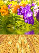 Abstract series Wood Plank textures and Nature background - stock illustration