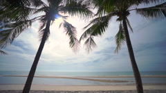 Beautiful Morning at the Beach Stock Footage