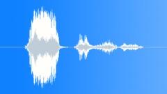 Male quiet please raspy shout - sound effect