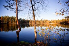Autumnal lake landscape Stock Photos