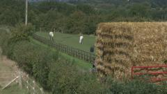 Straw bales on trailer in country lane. Stock Footage