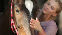 A young woman brushing and petting a horse in the stable. - stock footage