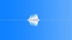 Single Duck Quack Sound Effect