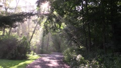 sun rays shine on country road 3 - stock footage