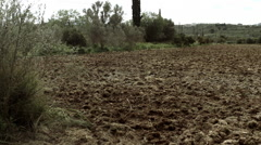 Goji berry plantation farm plowed ground pan across. Stock Footage
