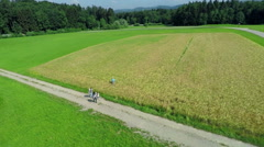Air view on wheat field Stock Footage