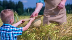 Boy giving a hat in the middle of the field Stock Footage