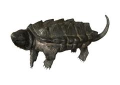 Alligator Snapping Turtle - stock illustration
