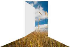 Door to field with blue sky. Easy for editing. Kuvituskuvat