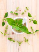 The circle of lemon basil( hairy  basil ) leaf and flower on wooden backgroun Stock Photos