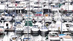VRSAR, ISTRIA - AUG. 2015. Boat Marina Detail - stock footage