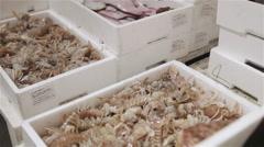 Fish market mantis shrimp 08 Stock Footage