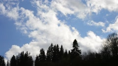 White cumulus move in real time above dark fir tree silhouettes Stock Footage