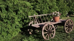 Old country wagon Stock Footage