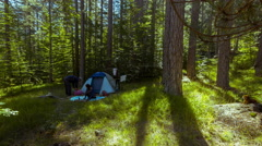 Camping timelapse, couple camping in the woods, morning sun 4K 25p Stock Footage