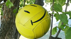 Smiley Face Ball Stuck in Tree Being Pushed Out, 4K Stock Footage