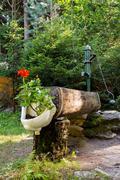 Rustic rural water pump with flowers in bidet Stock Photos