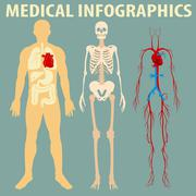 Medical infographic of human body Piirros