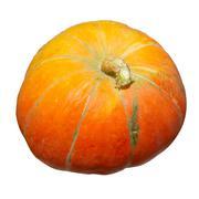 Orange pumpkin isolated on white. - stock photo