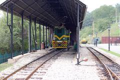 Railway station with old diesel train Kuvituskuvat