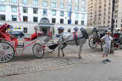 Horse-drawn carriages in Manhattan with building background Stock Photos