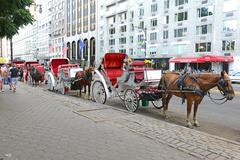 Horse-drawn carriages in Manhattan with building background - stock photo