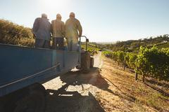 Vineyard worker on a wagon ride at farm - stock photo