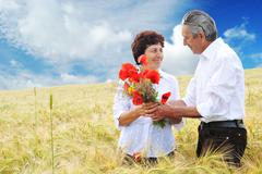 Wedding anniversary Stock Photos