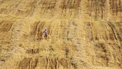 Boy running in a yellow field, Boy run the mown field, boy runs in the straw Stock Footage
